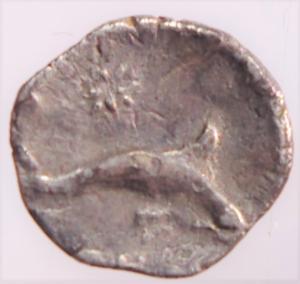 reverse: Mondo Greco. Calabria. Tarentum. 325-280 a.C. Diobolo. AG. D/ Conchiglia. R/ Delfino a destra, simbolo stella . Peso gr. 0,70. Diametro mm. 9. SNG ANS 1488.BB+. RR....