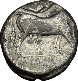 reverse: Central and Southern Campania, Neapolis. AR Didrachm, c. 300 BC