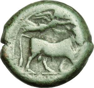 reverse: Central and Southern Campania, Neapolis. AE, 275-250 BC