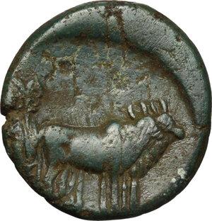 reverse: Augustus (27 BC - 14 AD).. AE 18 mm, Macedon, Philippi