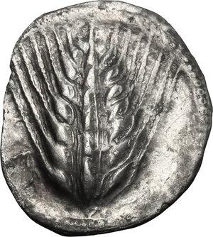 obverse: Southern Lucania, Metapontum. AR Drachm, 540-510 BC