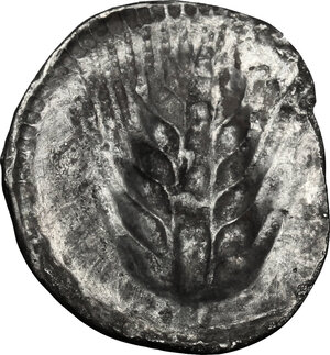 reverse: Southern Lucania, Metapontum. AR Drachm, 540-510 BC