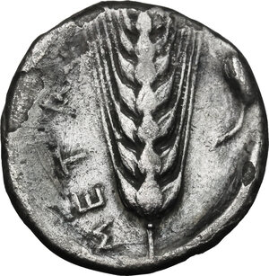reverse: Southern Lucania, Metapontum. AR Stater, 400-340 BC