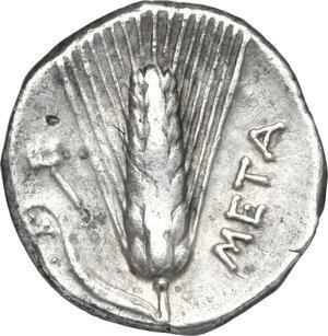 reverse: Southern Lucania, Metapontum. AR Stater, circa 330-290 BC