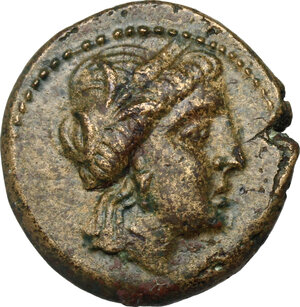 obverse: Southern Lucania, Metapontum. AE 17 mm, late 3rd century BC