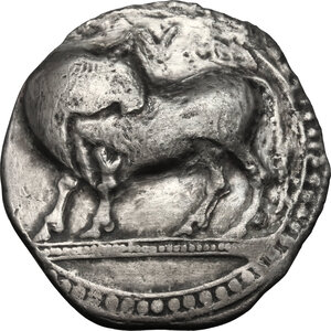 obverse: Southern Lucania, Sybaris. AR Stater, 550-510 BC