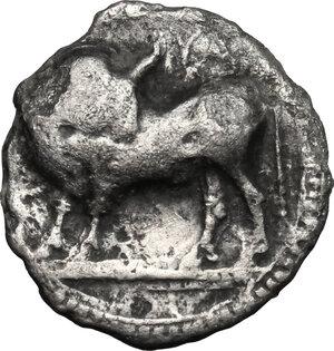 obverse: Southern Lucania, Sybaris. AR Drachm, 550-510 BC