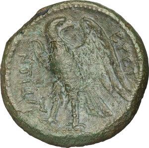 reverse: Bruttium, The Brettii. AE 22mm, 214-211 BC