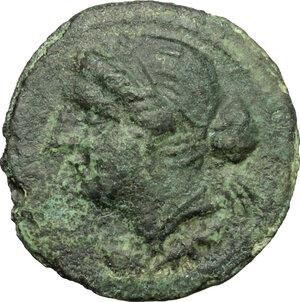 obverse: Bruttium, The Brettii. AE Half, 211-208 BC