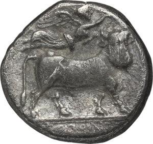 reverse: Central and Southern Campania, Neapolis. AR Didrachm, circa 320-300 BC
