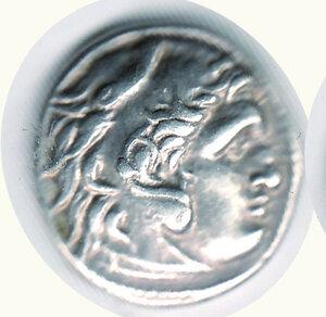 obverse:  TRACIA - Lisimaco (305-281 a.C.) - Dracma