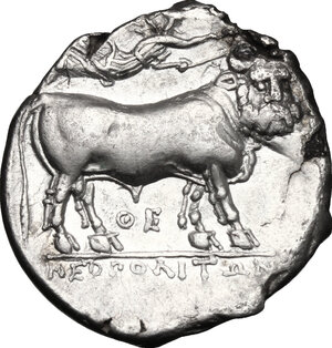 reverse: Central and Southern Campania, Neapolis. AR Didrachm, c. 300-275 BC