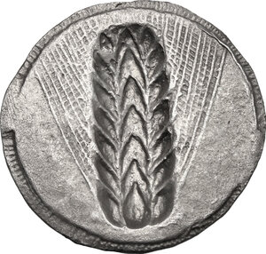 reverse: Southern Lucania, Metapontum. AR Stater, c. 540-510 BC