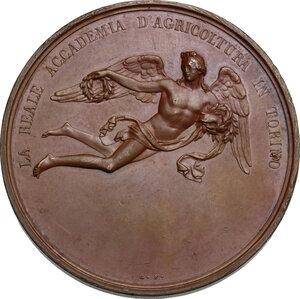 reverse: Carlo Alberto (1798-1849).. Medaglia premio della Reale Accademia d Agricoltura di Torino