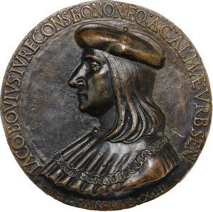 obverse: Giacomo Bovi, giureconsulto, senatore e Gonfaloniere del popolo di Bologna. Medaglia uniface 1513. AE. mm
