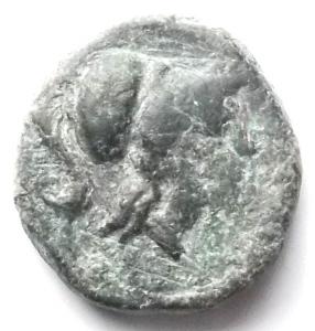 obverse: Apulia Arpi (III° secolo a.C.) AE 14,4 mm. D/ Testa di Athena a destra. R/ APΠANOY. Grappolo d uva. AE. 3,94 gr. SNG Ans 646. BB+. Patina verde
