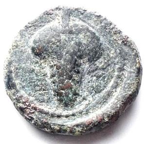 reverse: Apulia Arpi (III° secolo a.C.) AE 14,4 mm. D/ Testa di Athena a destra. R/ APΠANOY. Grappolo d uva. AE. 3,94 gr. SNG Ans 646. BB+. Patina verde