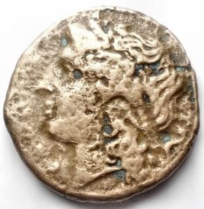 reverse: Campania, Cales. AE. 19,2 mm. 265-240 a.C.  R/ Toro androcefalo a destra,  sopra lira. g 5,36
