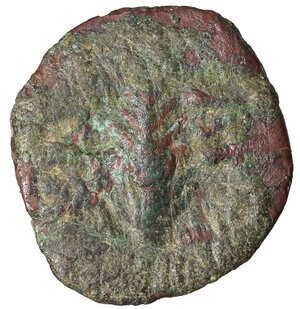 obverse: Porcius Festus. 59-62 C.E. Æ prutah. 2.85 gr. - 18.2 mm. Procurator under Nero, Year 5 = 58/59 CE. O:\ NEPWNOC, legend within wreath, bottom tied with X. R:\ LE KAICAPOC, palm branch. Hendin 1351; Meshorer TJC 345; RPC 4972. VF+