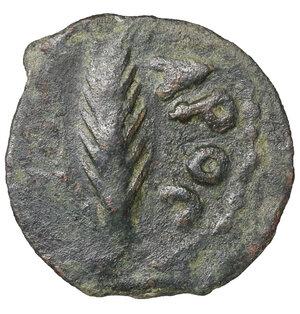reverse: Judaea, Procurators. Porcius Festus (59-62 CE). Æ Prutah. 3.05 gr. – 17.7 mm. In the name of Nero. Jerusalem mint. Dated RY 5 of Nero (58/9 CE). O:\ NЄP/ωNO/C in three lines within wreath. R:\ [LЄ] KAICAPOC, Palm frond. RPC I 4972; Meshorer 35. XF