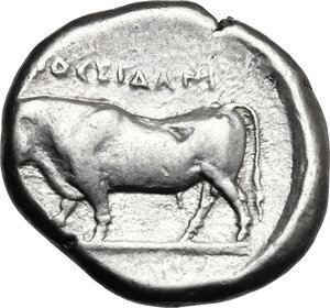 reverse: Northern Lucania, Posidonia. AR Stater, c. 445-420 BC