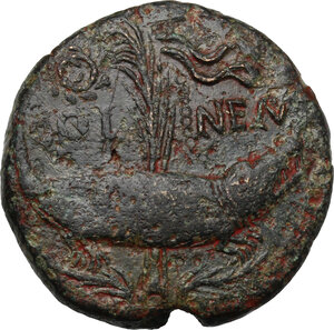 reverse: Augustus (27 BC - 14 AD) with Agrippa (died 12 BC).. AE As, Nemausus mint, Gaul