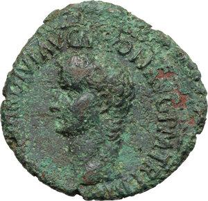 obverse: Gaius (37-41).. AE As, 40-41 AD