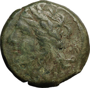 obverse: Tauromenion.  Roman Rule.. AE 24mm, after 216 BC