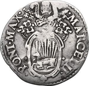 obverse: Ancona.  Marcello II (1555), Marcello Cervini degli Spannocchi. Giulio, II tipo