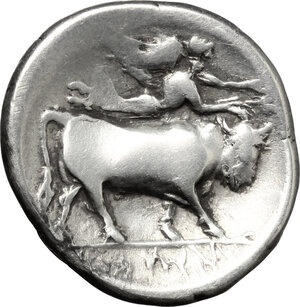 reverse: Central and Southern Campania, Neapolis. AR Stater, 300-260 BC