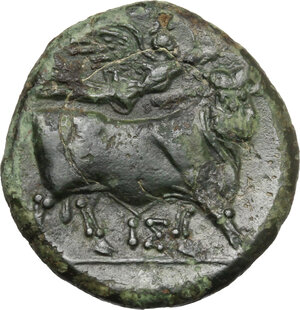 reverse: Central and Southern Campania, Neapolis. AE 19 mm, 275-250 BC