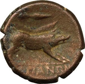 reverse: Northern Apulia, Arpi. AE 22 mm, 325-275 BC
