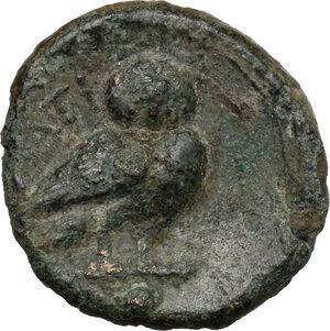 reverse: Northern Apulia, Teate. AE Uncia, c. 225-200 BC