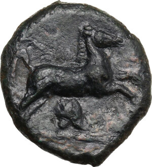 reverse: Entella.  Campanian mercenaries. AE 19 mm, before 404 BC