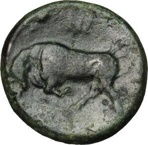 reverse: Syracuse.  Agathokles (317-289 BC).. AE 15 mm