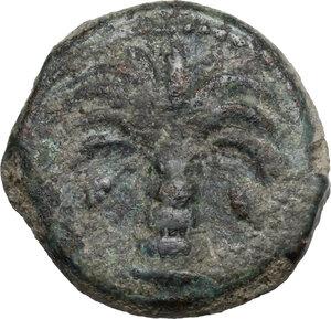 obverse: AE Half Shekel, Uncertain Punic mint. Circa 300 BC