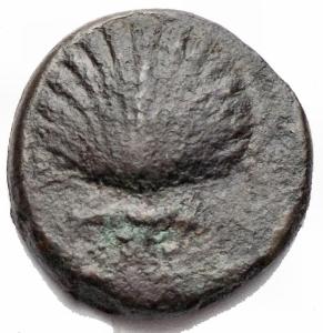obverse: Varie - Graxa. AE 15,6 mm. ca 250-225 a.C. D/ Conchiglia. R/ Aquila stante a destra con le ali aperte su fulmine. SNG ANS 797. HN(Italy) 773. g 2,86. BB. Raro. Patina verde nera
