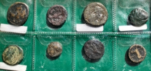reverse: Lotti - Evo antico Insieme di 8 esemplari a. ex Bolaffi