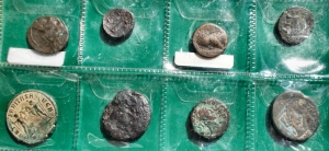 reverse: Lotti - Evo antico Insieme di 8 esemplari b. ex Bolaffi