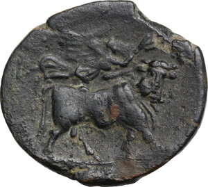 reverse: Central and Southern Campania, Neapolis. AE 21 mm. 275-250 BC