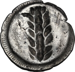 reverse: Southern Lucania, Metapontum. AR Stater, 510-470 BC