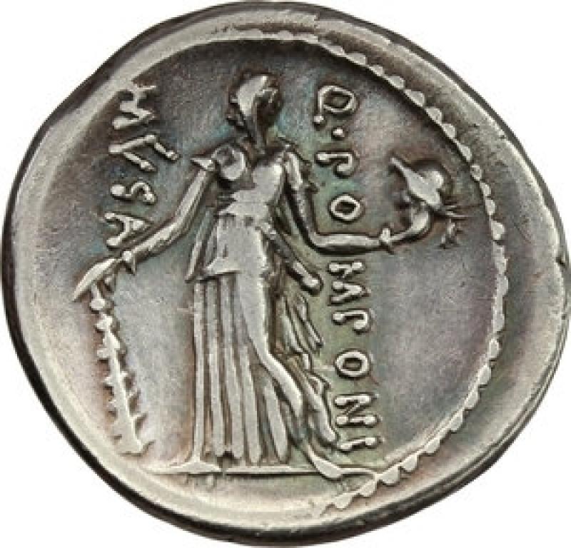 reverse: pomponia denario