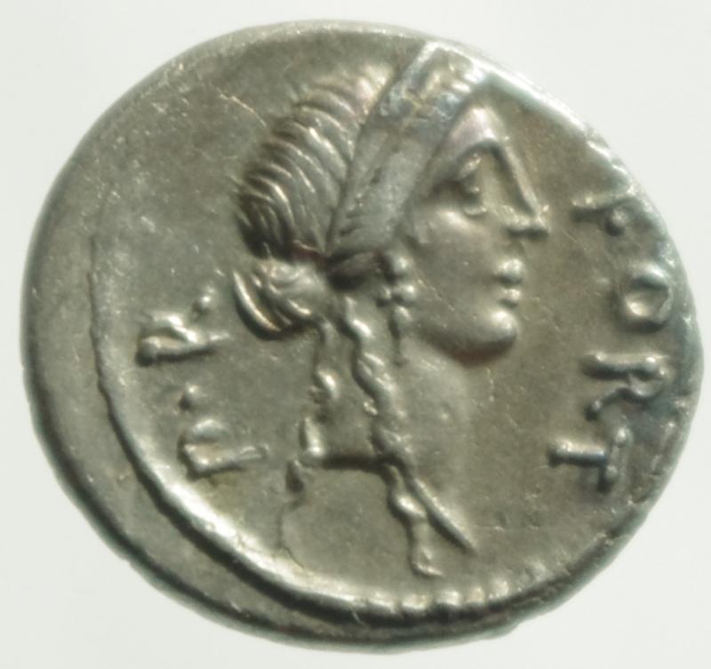 obverse: sicinia denario