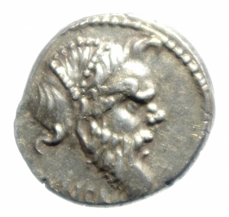 obverse: vibia denario
