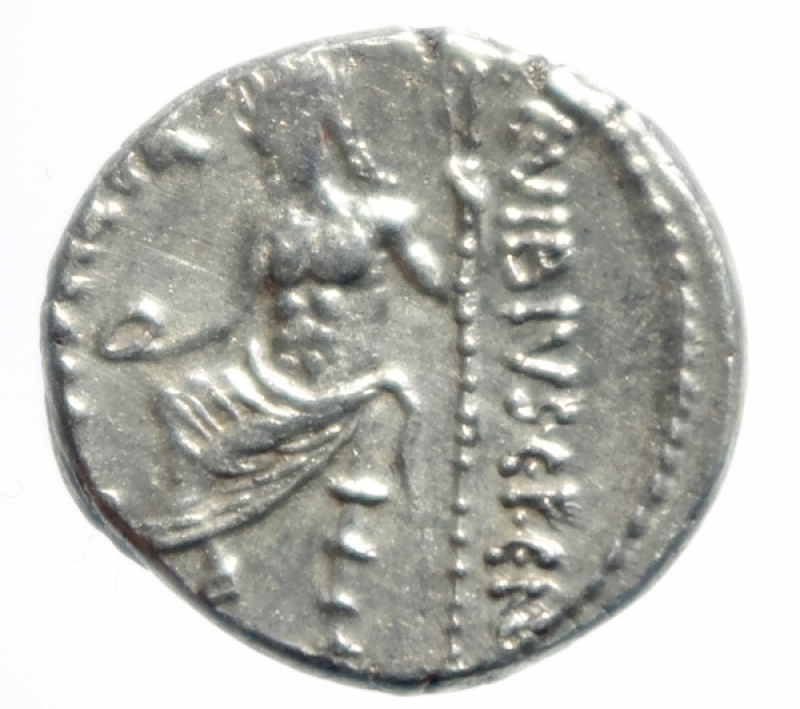 reverse: vibia denario