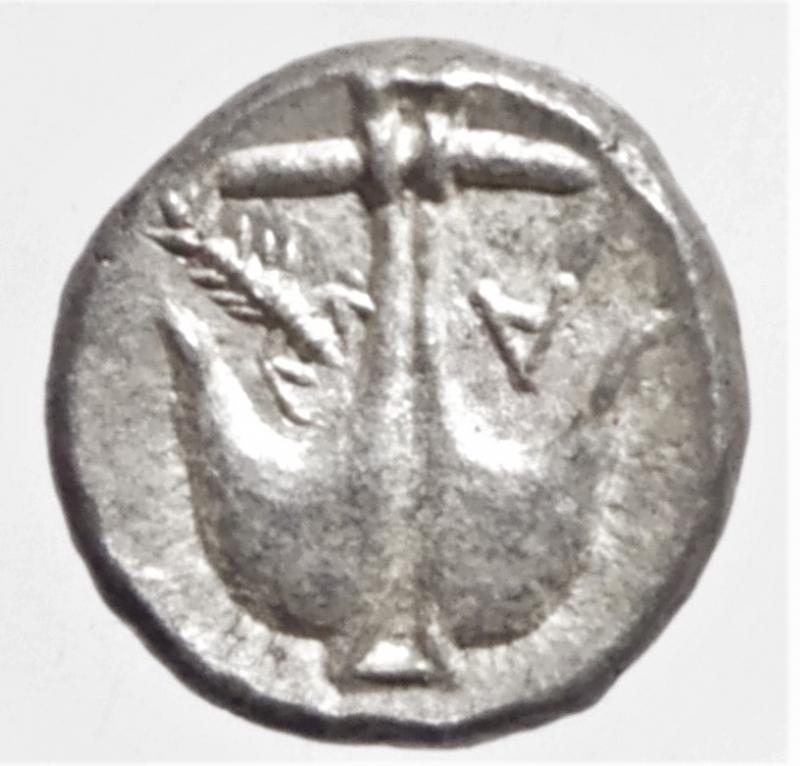 reverse: apollonia pontica