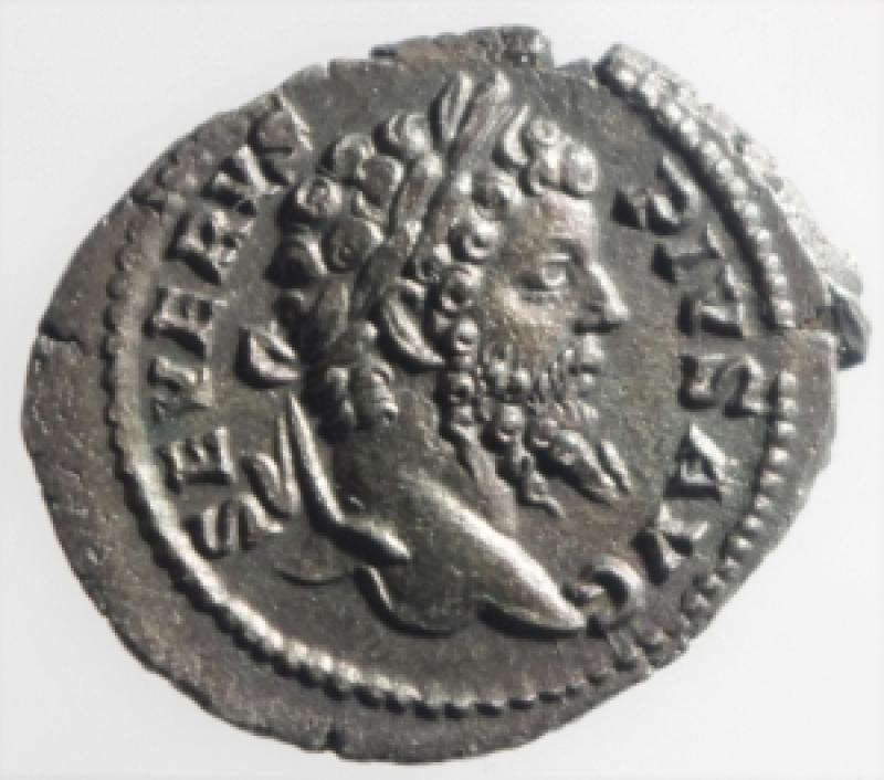 obverse: settimio severo denario