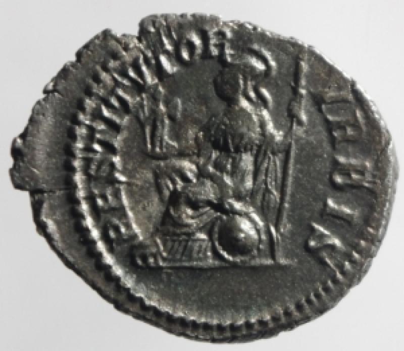 reverse: settimio severo denario