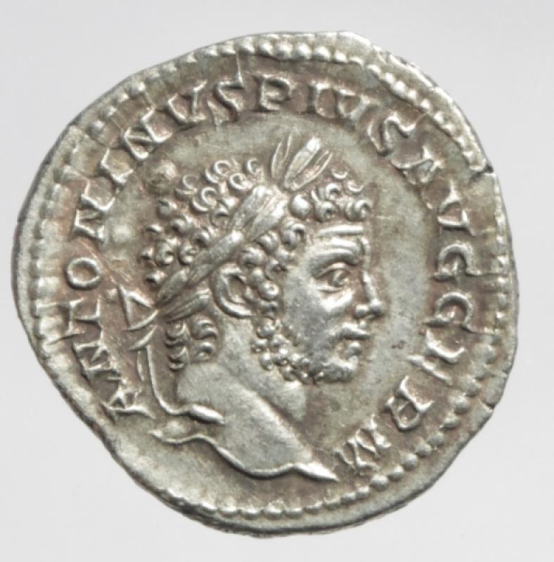 obverse: caracalla denario