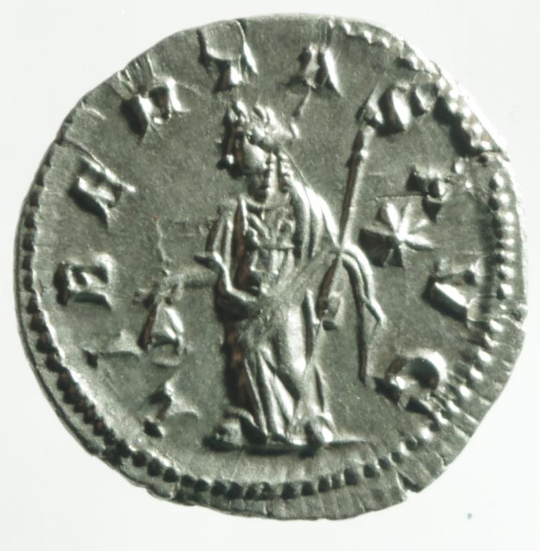 reverse: eliogabalo denario